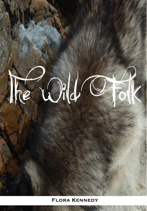 The Wild Fol cover
