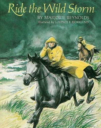 ride the wild storm book cover